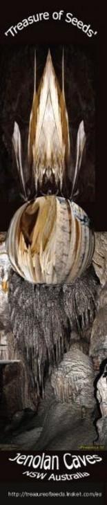 Ffmendoza - Book mark - Treasure of seed